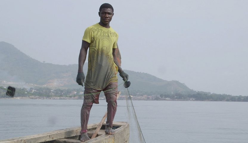 Why are West Africa's Fish Disappearing?